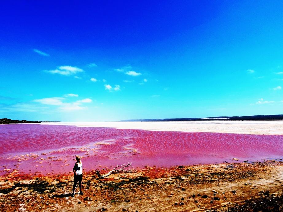 Australia hutt lagoon rosa infinito
