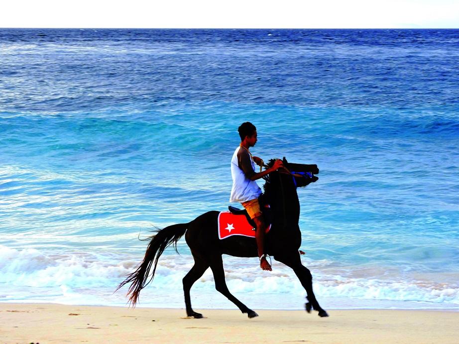 Sumba a cavallo