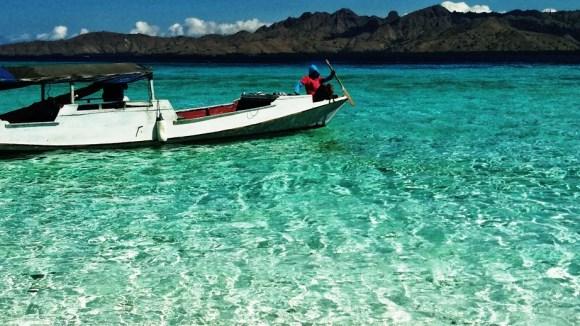 Komodo la grande laguna di taka makassar