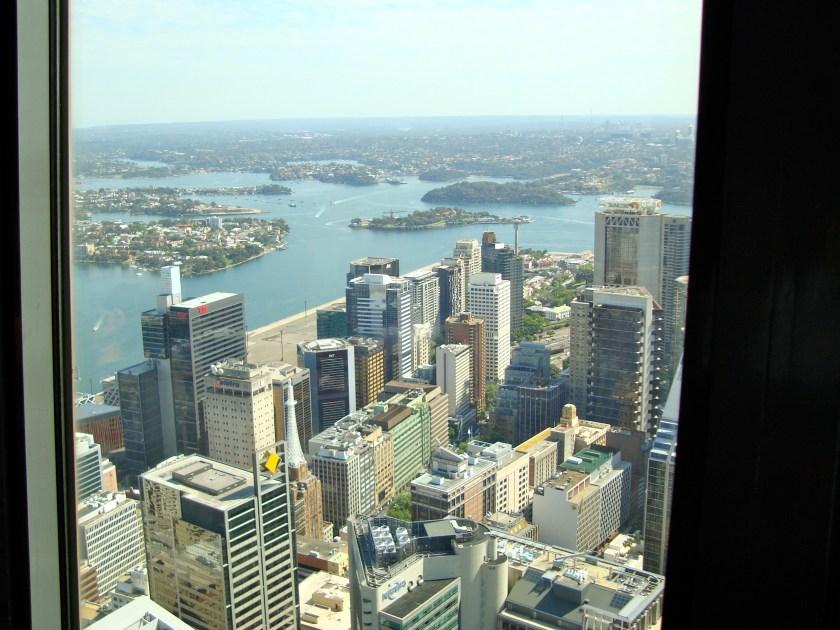 Panorama dalla Sydney Tower