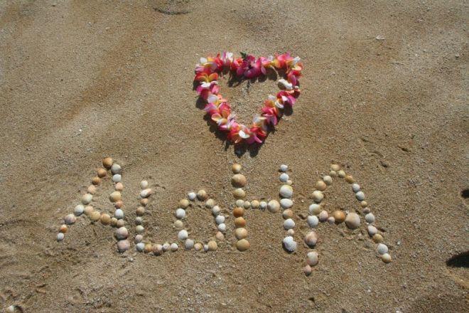 Hawaii Aloha