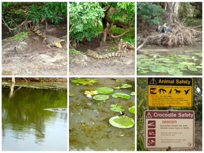 Australia Wild e Outback Kakadu National Park