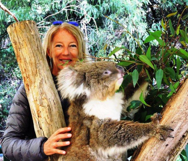 io e il koala