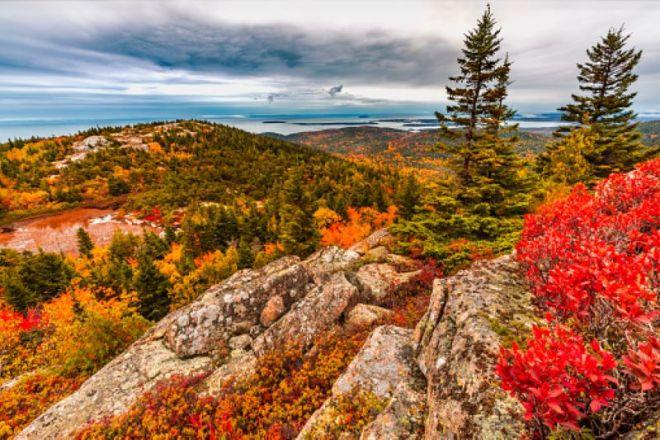 Foliage-Maine