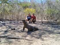 Komodo Tour 2 Days 1 Night