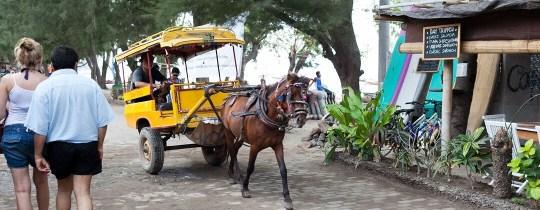 Paard en wagen, de lokale taxi op Gili Trawangan - Indonesië