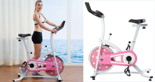 Best Spin Bikes - Sunny Health and Fitness Indoor Cycling Bike Pink