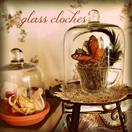 Upcycled Glass Cloches