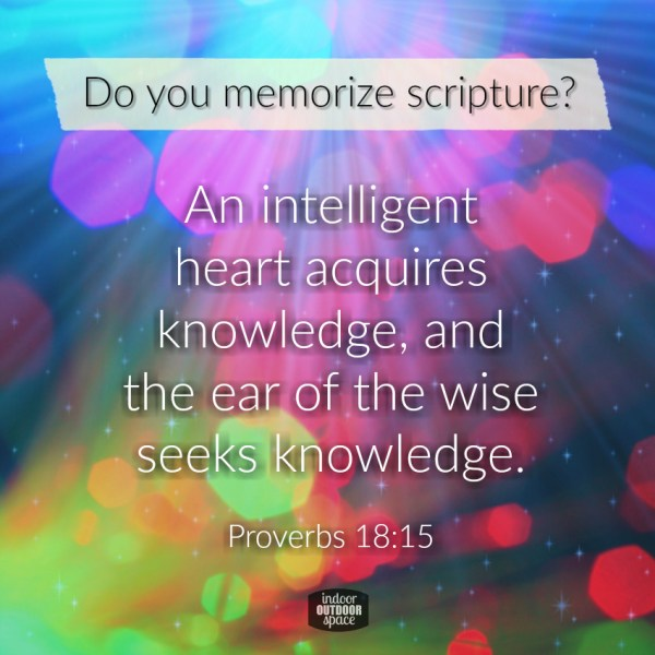Do you memorize scripture verses - a devotional from Proverbs 18:15