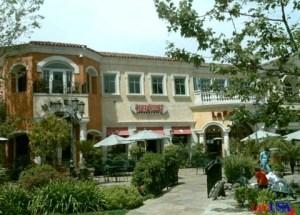 Calabasas-shopping-mold-inspections