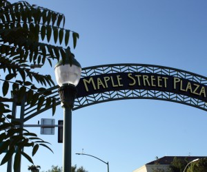 escondido-maple-street-plaza-mold-inspection-testing