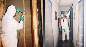 mold-remediation-workers-performing-mold-removal