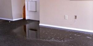 lancaster-water-damage-mold-infestation