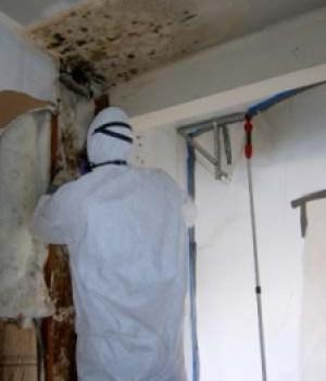 oakland-mold--contamination-removal