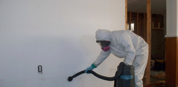 Mold-removal-moreno-valley