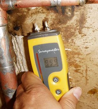 moisture detection in mold inspection