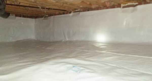 mold-removal-encapsulant