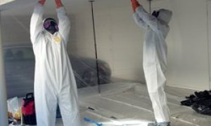 mold-removal-of-contaminated-material
