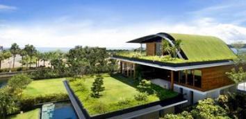 Rumah dengan Konsep Hijau