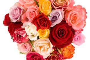 Warna di Hari Valentine