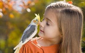 Binatang Peliharaan yang cocok untuk anak