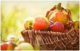 Makanan Untuk Melawan Diabetes