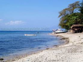 larantuka beach-3