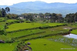 Batutumonga