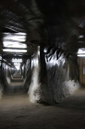 10. The lustrous ceiling of salt at a bifurcation of the tunnel - 2
