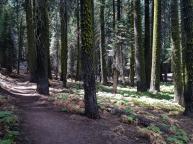 2014-09-15 13.07.57 - In The Sierras (Matias - iphone)