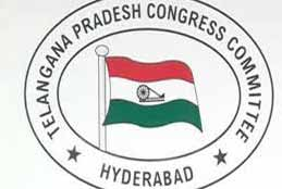 TPCC Exudes Confidence Over Victory In Municipal Elections