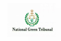 All Staff to Attend Office from June 1: National Green Tribunal
