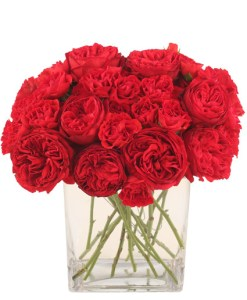 red-carpet-roses-arrangement.425