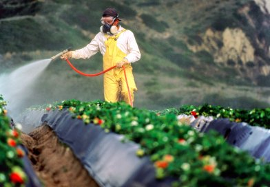 farmer pesticide spray