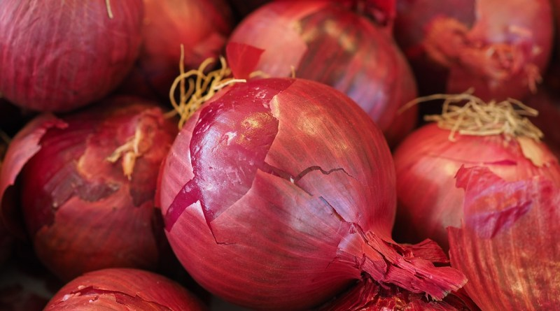 1.2 Lakh ton onions import approved to curb price rise: Centre