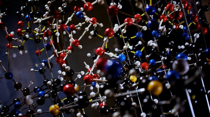 Indian scientists from CIMAP develop Ayurvedic herbal extract to improve Vitamin B12 uptake
