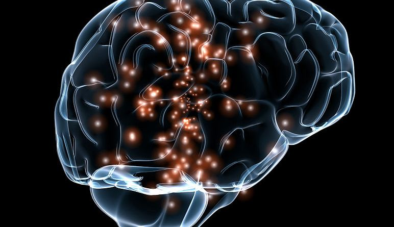JNCASR, TIFR scientists caution use of new method to understand brain activity-behaviour relationship