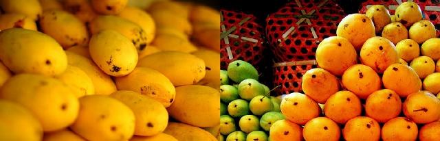 Fruit (640x206)