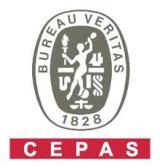 www.bureauveritas.it