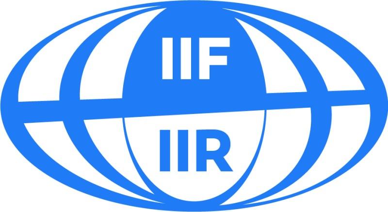 19IIF_logo_ssbaselineCMJN