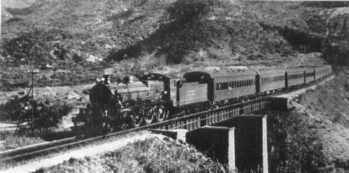 Train Approaching Tai Wai
