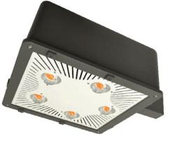 Custom Color LED Lights
