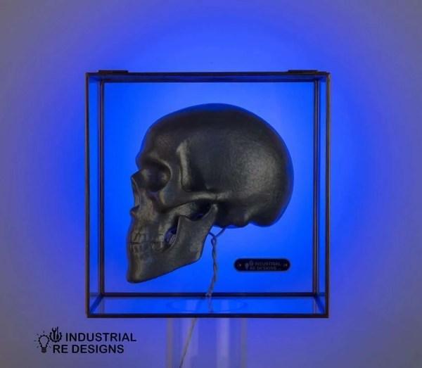Schedel-skull-in-glazen-box-BINK-2