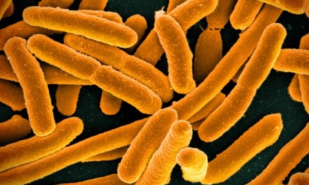 Bacterial Biomes Could Assist Medical Science, Police Work