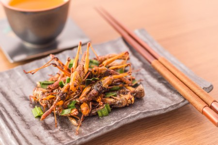 A photo of fried crickets served on a fancy plate.