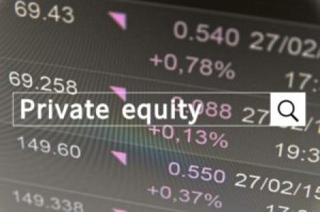 """The keywords """"private equity"""" typed into an online search query."""
