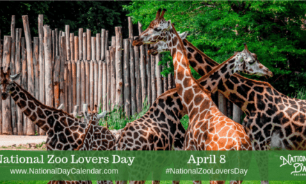National Zoo Lovers Day
