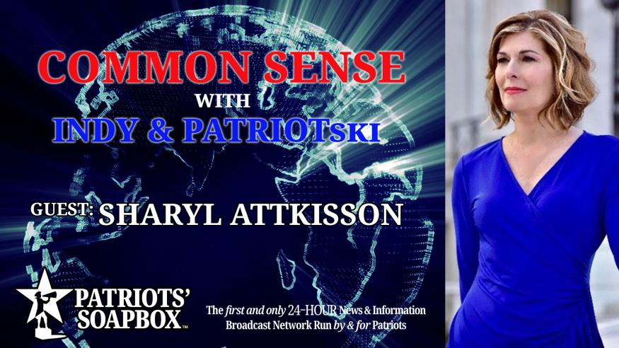 Ep. 230 Interview With Sharyl Attkisson