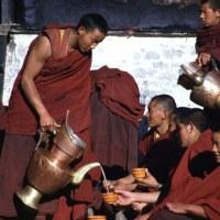 Пить или не пить? Ответ тибетской медицины