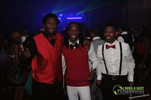Clinch County High School Homecoming Dance 2014 Mobile DJ Services (30)